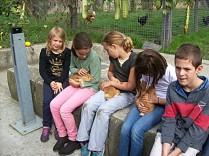 les ce2cm1 de l'école Saint Pierre de Nantes à la ferme de la Chantrerie