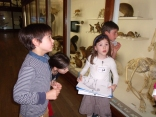 Les CP-CE2 au Muséum d'Histoire Naturelle